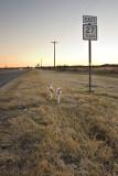 Near Center Point, Texas