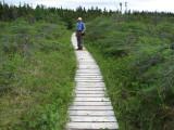 Day 1 - Gros Morne National Park