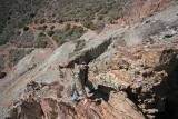 Jay Climbing Up