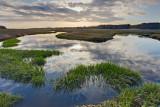 April : Quivett Creek at high tide