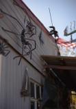V 58 wall spiders.jpg