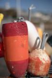 V 58 buoys