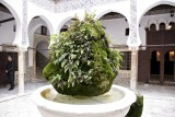 Casbah - Alger - The green fountain