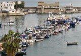 Alger - Fishing port