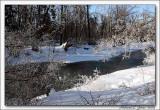 Cold Creek003 copy.jpg
