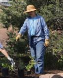 Herb Garden Planting (2450)