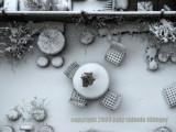 city, snow 2009