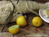 wool and limon