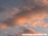 3.12.08 clouds
