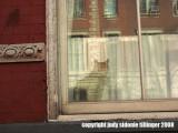 3.15.08 king street cat