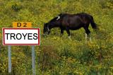 cheval de Troyes