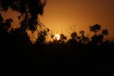 Anna Ganowiczsplendid sunrise