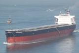 Maritime Hareshio
