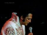 The Elvis Experience.jpg