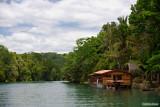 A Cruise on Loboc River 1