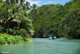 A Cruise on Loboc River 3