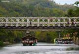 A Cruise on Loboc River 5