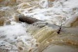 rushing water.jpg