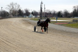 Smarty's War King gets a workout . . .