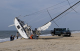 shipwrecked on Fire Island
