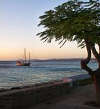 Bonaire Samur