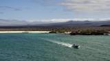 Isla Santa Cruz
