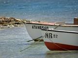 lac bay boats