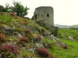 Dolbadarn Castle in heavy rain - 2