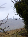 A  first  glimpse  of  the  Cherhill  monument.