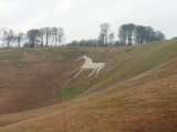 The Cherhill  White  Horse on a rather dreich day.