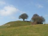 Castle  Hill, the  motte
