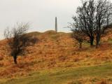 Cherhill  monument  across  Oldbury  hillfort  ramparts.
