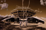 Giesel Library67