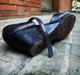 el zapato y la hormiga