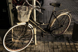 bicicleta con cesto