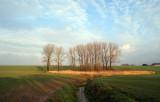 mechelen (the netherlands)