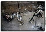 Bicycle Skeletons