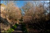 Dorset walkways