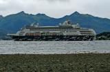 Cruise_ship_gulls.jpg