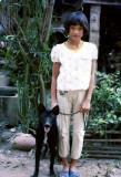 Dao: 1982-1984