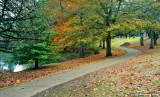 A Pleasant Path