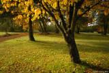 D200-2007-10-23_118.jpg