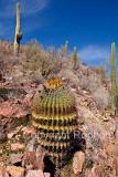 09-12 Tucson MP 04.JPG