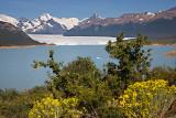 08-01 Perito Moreno Glacier 01.JPG