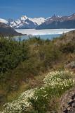 08-01 Perito Moreno Glacier 02.JPG