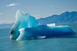 08-01 Viedma Glacier 01.JPG