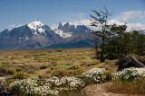 08-01 Torres del Paine 01.JPG