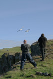 Me shooting Fulmar at St Abbs Head, Scotland