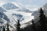 Icefields Parkway,Jasper NP,Alberta