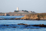 Piedras Blancas..central California coast